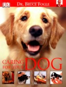 caring-for-your-dog