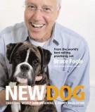 new-dog